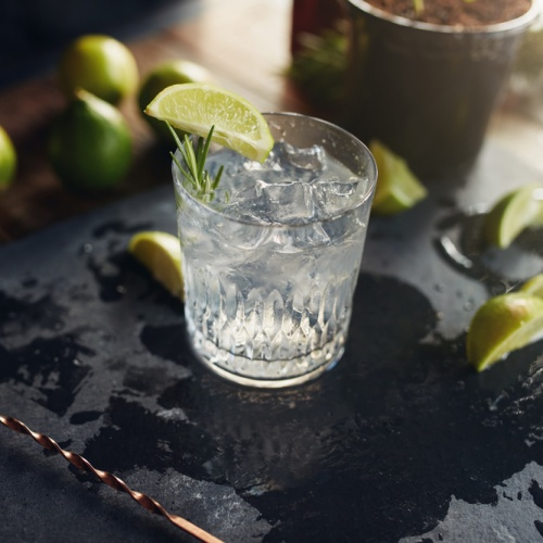 PSD Gin Dinner